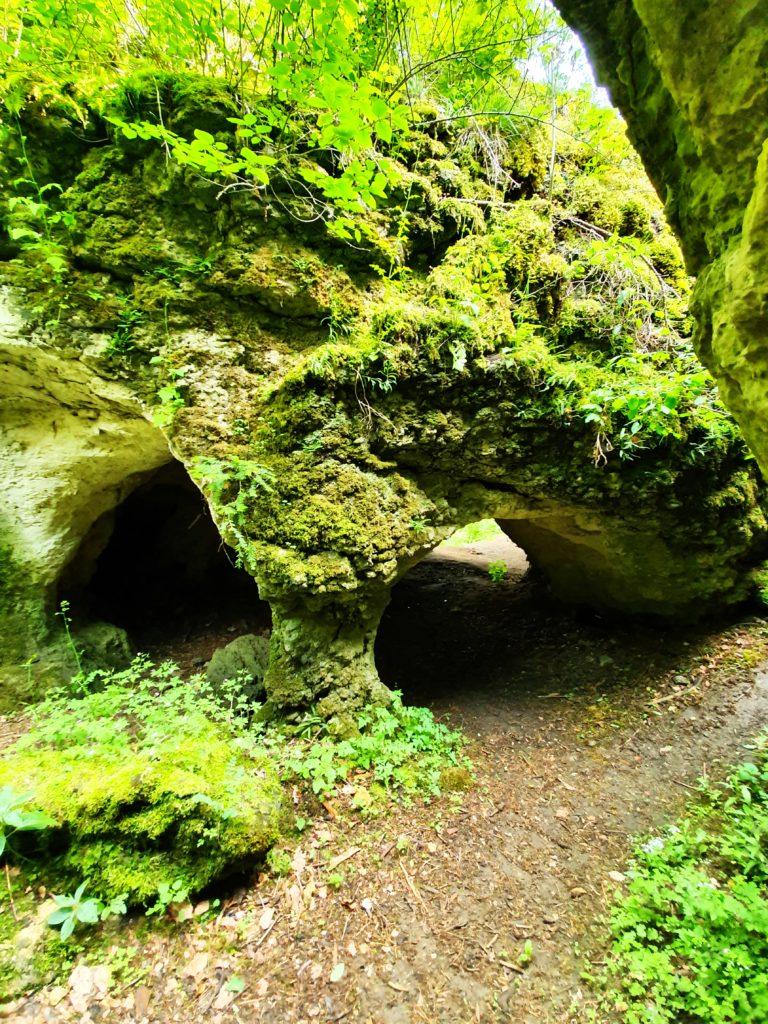 Obere Messhöhle D 296